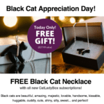Black Cat Appreciation Day! Cat Lady Box Coupon – Free Necklace!