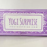 Yogi Surprise Subscription Box Review + Coupon– February 2017