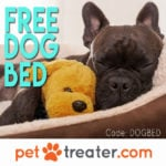 Pet Treater Dog Box Coupon – Free Dog Bed With Subscription