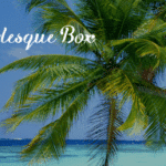 Pearlesque Box August 2018 Spoiler #2 + Coupon Code!