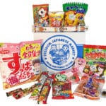 Freedom Japanese Market Box June 2017 Spoilers + Coupon!