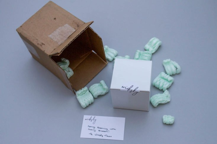 cardboard box on its side with packing peanuts and white smaller box next to it