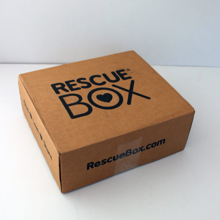 Rescue Box Review March 2019 - Box Closed Top
