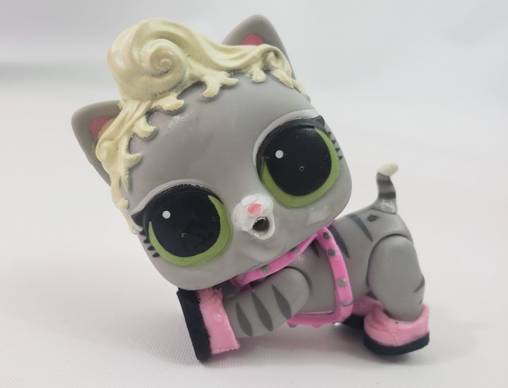 LOL Summer Box Review 2019 - Kitty Cat Sitting With Her Collar And Shoes Front